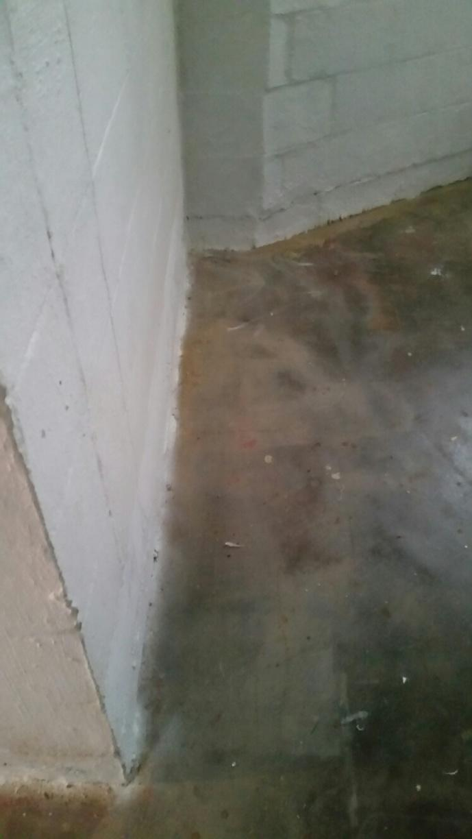 The floors around this wall are marked by water intrusion.