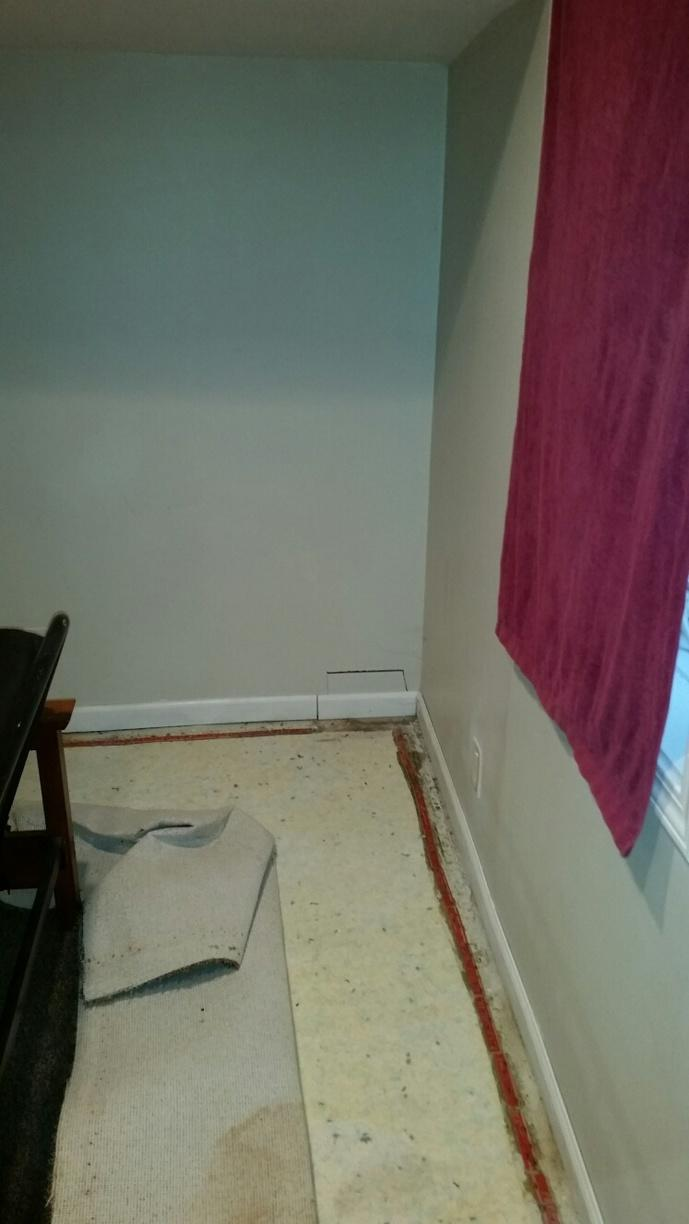 The drywall in this picture has clearly been damaged by ground water intrusion.