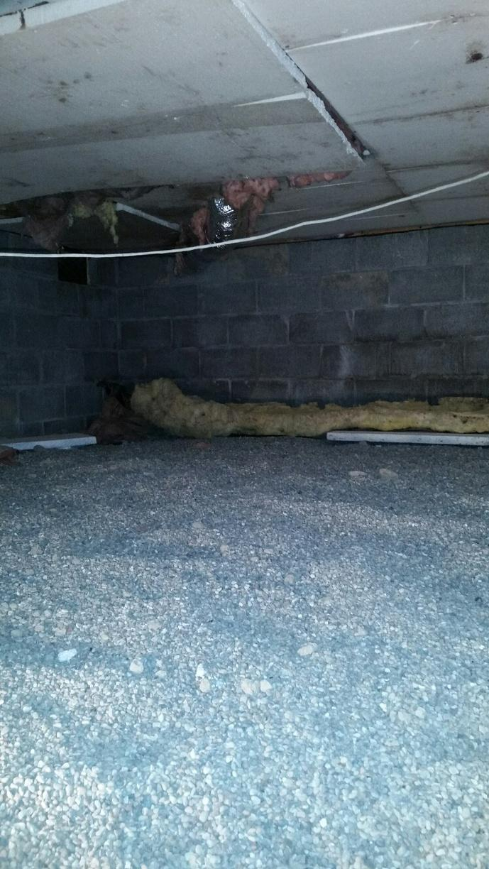 Untreated crawlspace has cause mold growth on the drywall insulation panels.