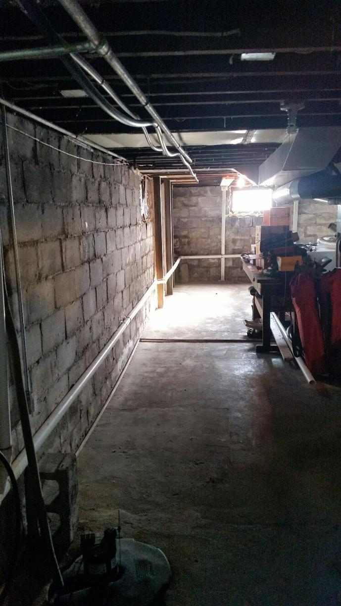 Dark, damp basement has left the homeowners with an issue.
