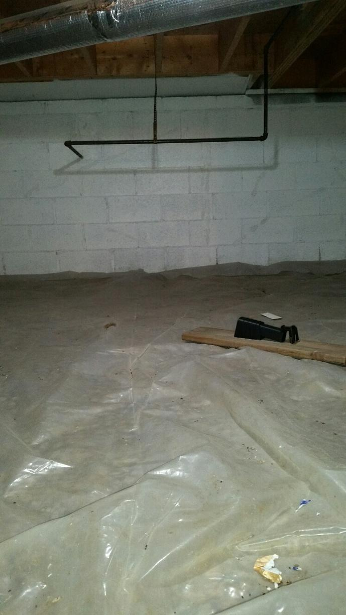 Untreated crawlspace has left the area and the basement wet and moldy.