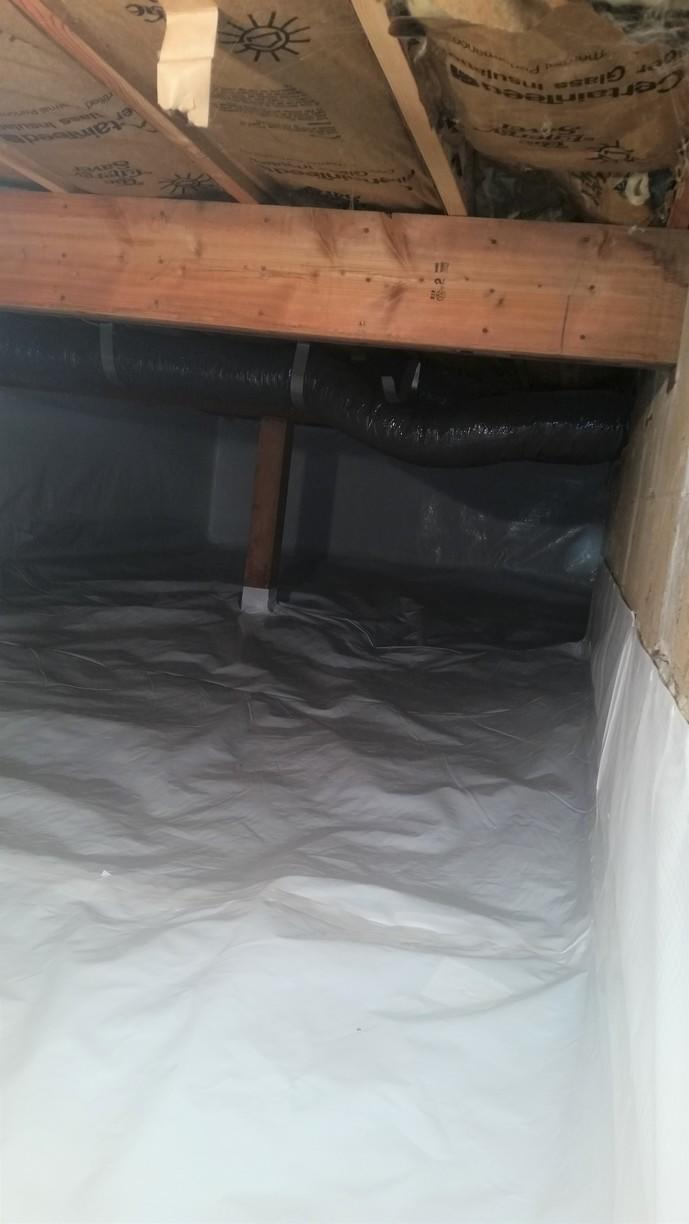 CleanSpace is laid across the floor and up against the wall to permanently seal off the area.