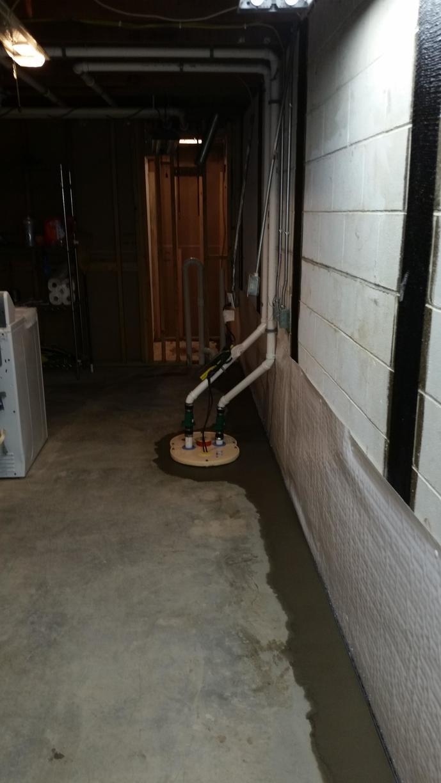 WaterGuard and TripleSafe Sump Pump