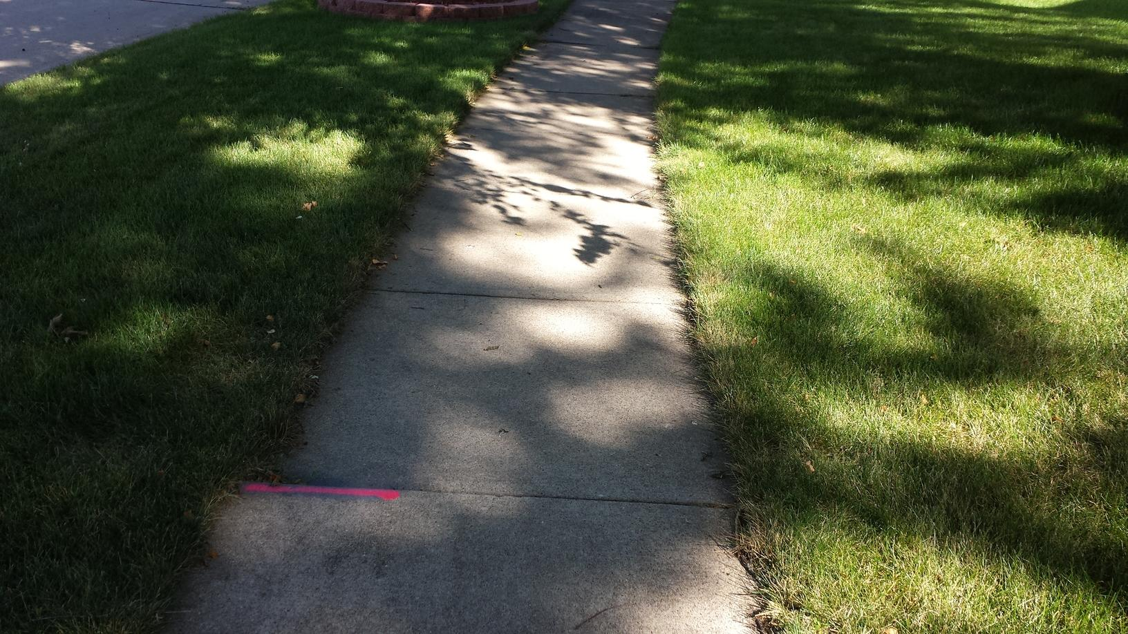The sidewalk before it is repaired and fixed.