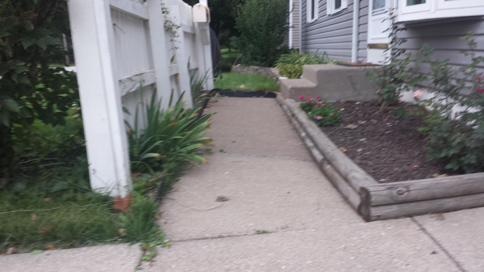 The cracking and sinking sidewalk is a trip hazard and and eye sore.