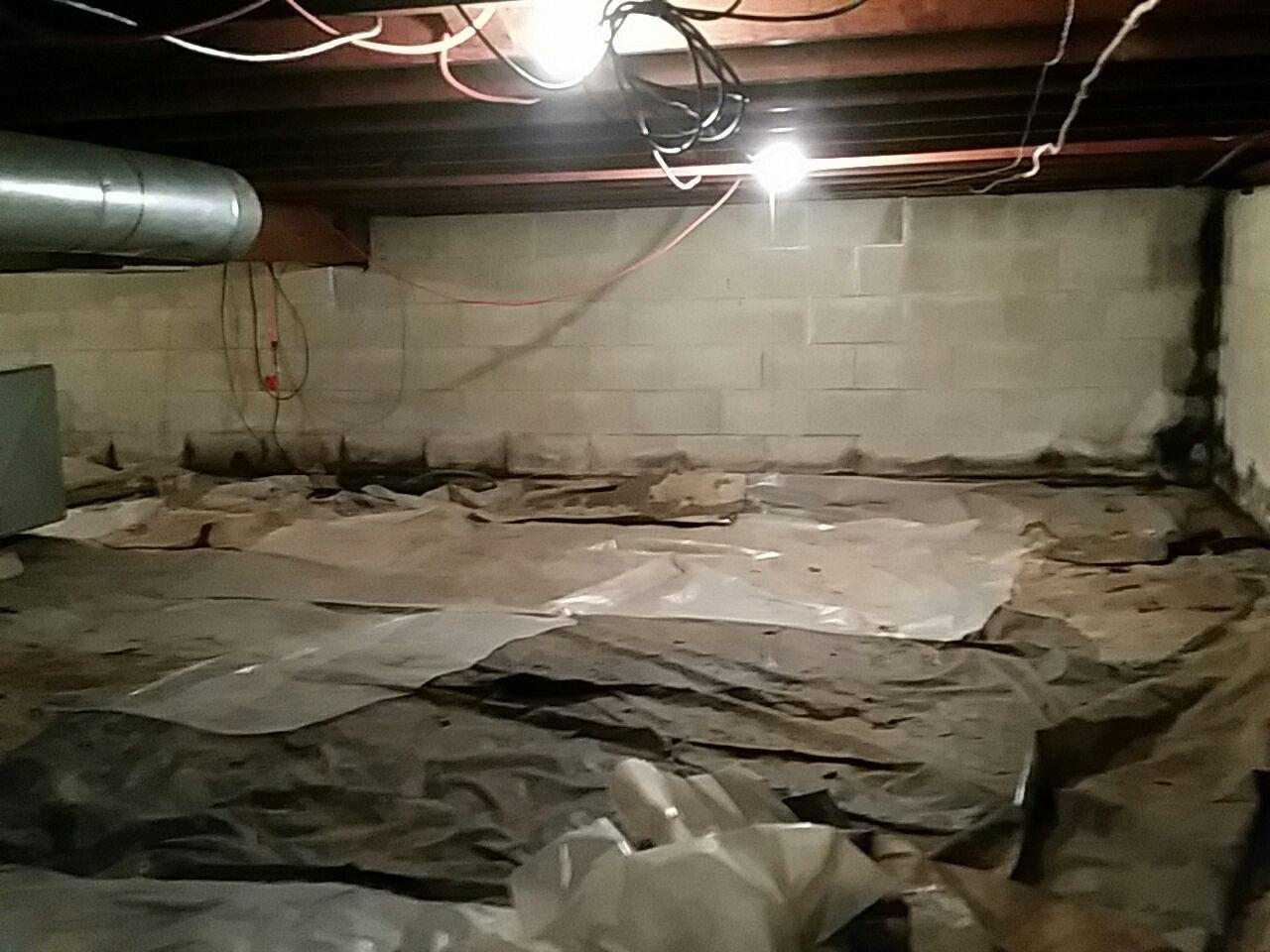 Before the crawlspace was damp and beginning to grow mold.