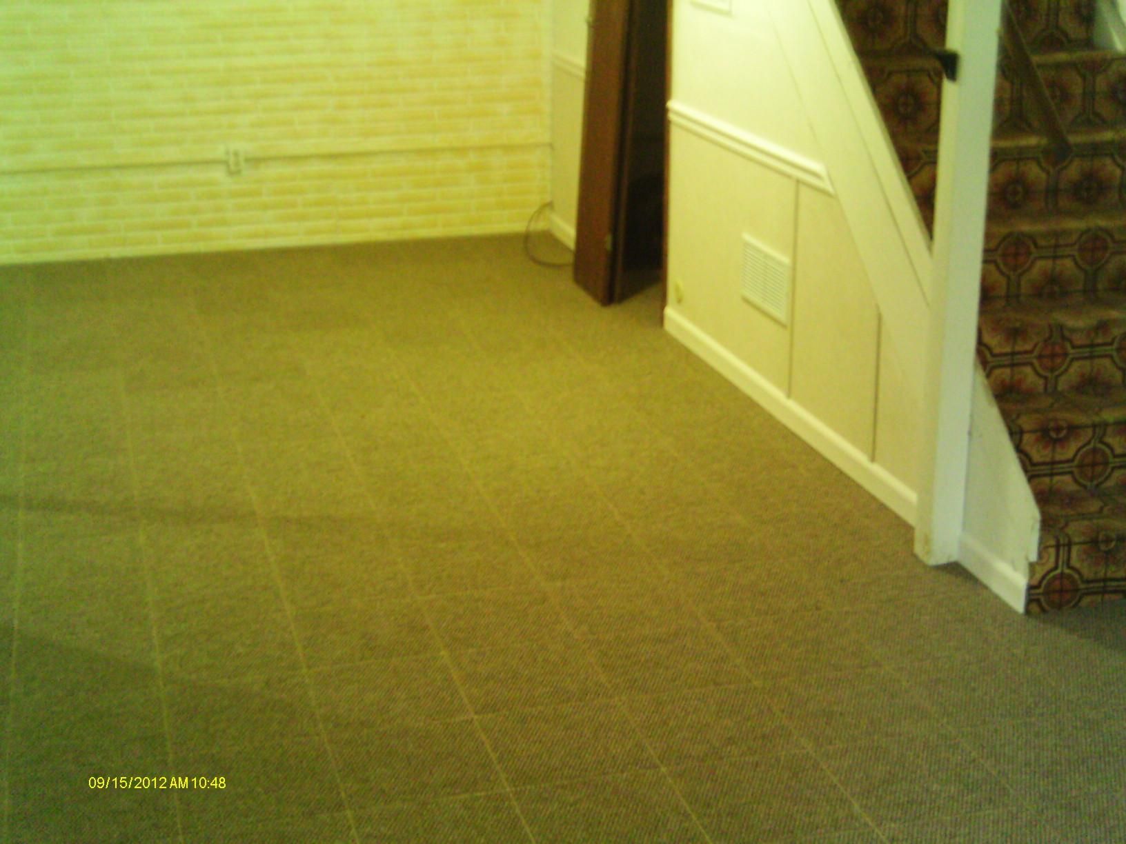 ThermalDry Flooring has many different options, including carpet.