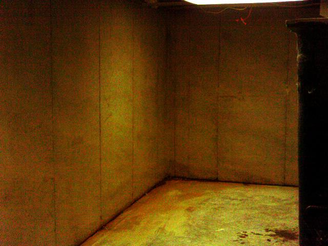 This basement is dark, damp with visible water intrusion along the walls and where the walls meet the floor.