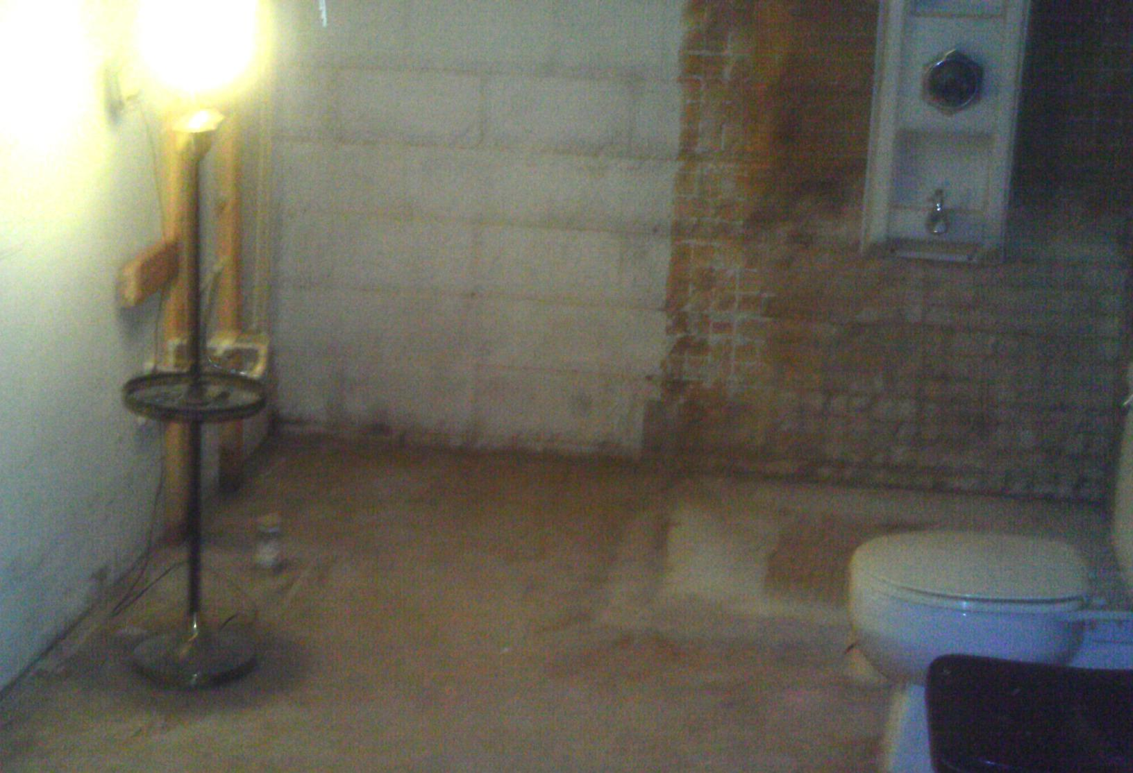 Mold thrives in damp spaces! Making basements smell foul.
