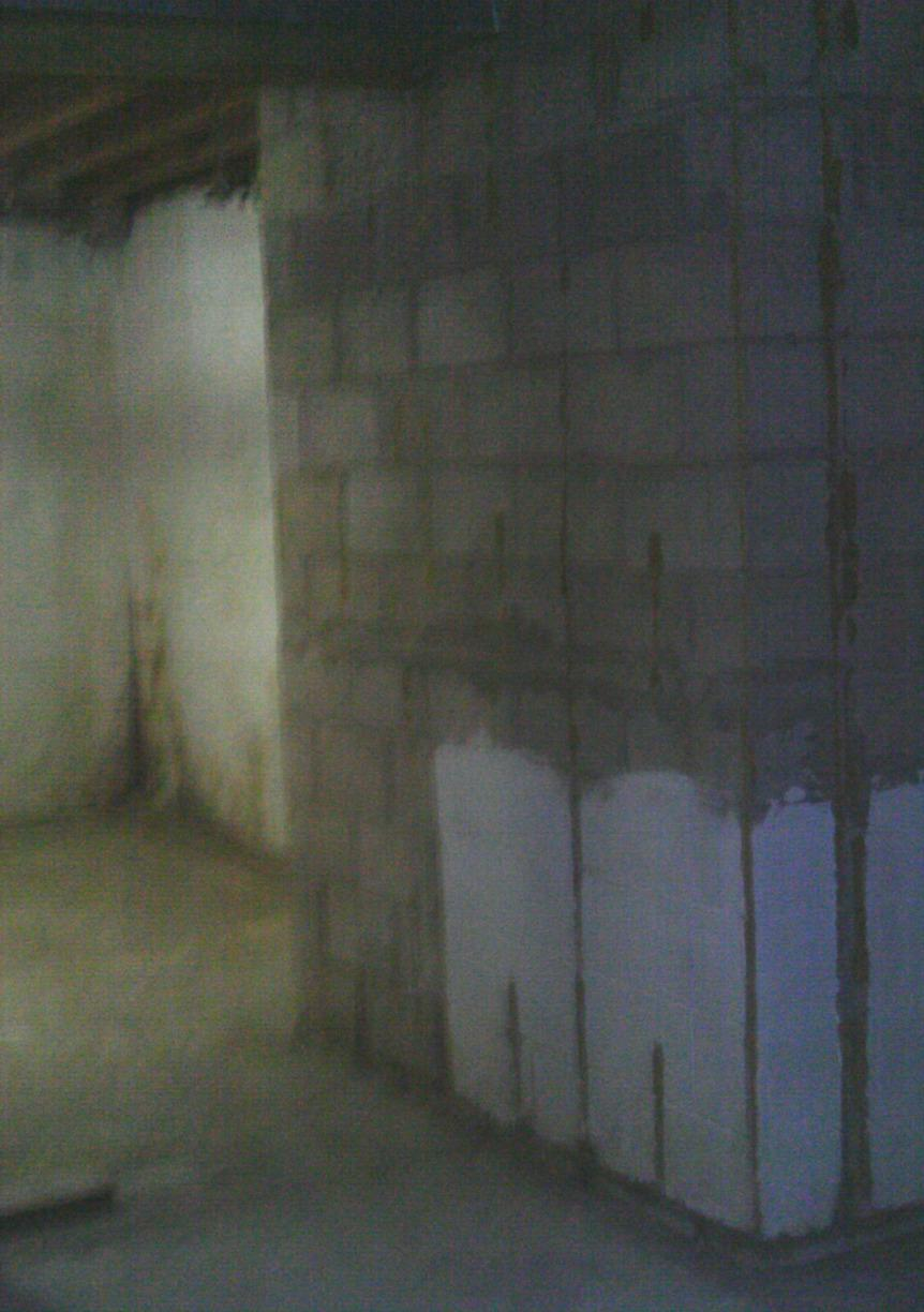 Water damage is evident on the walls and foundation floor.