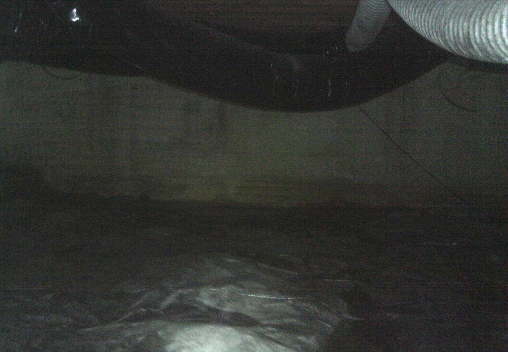 The crawl space was sealed with a thin liner that was not efficient enough to properly seal the space from the earth.