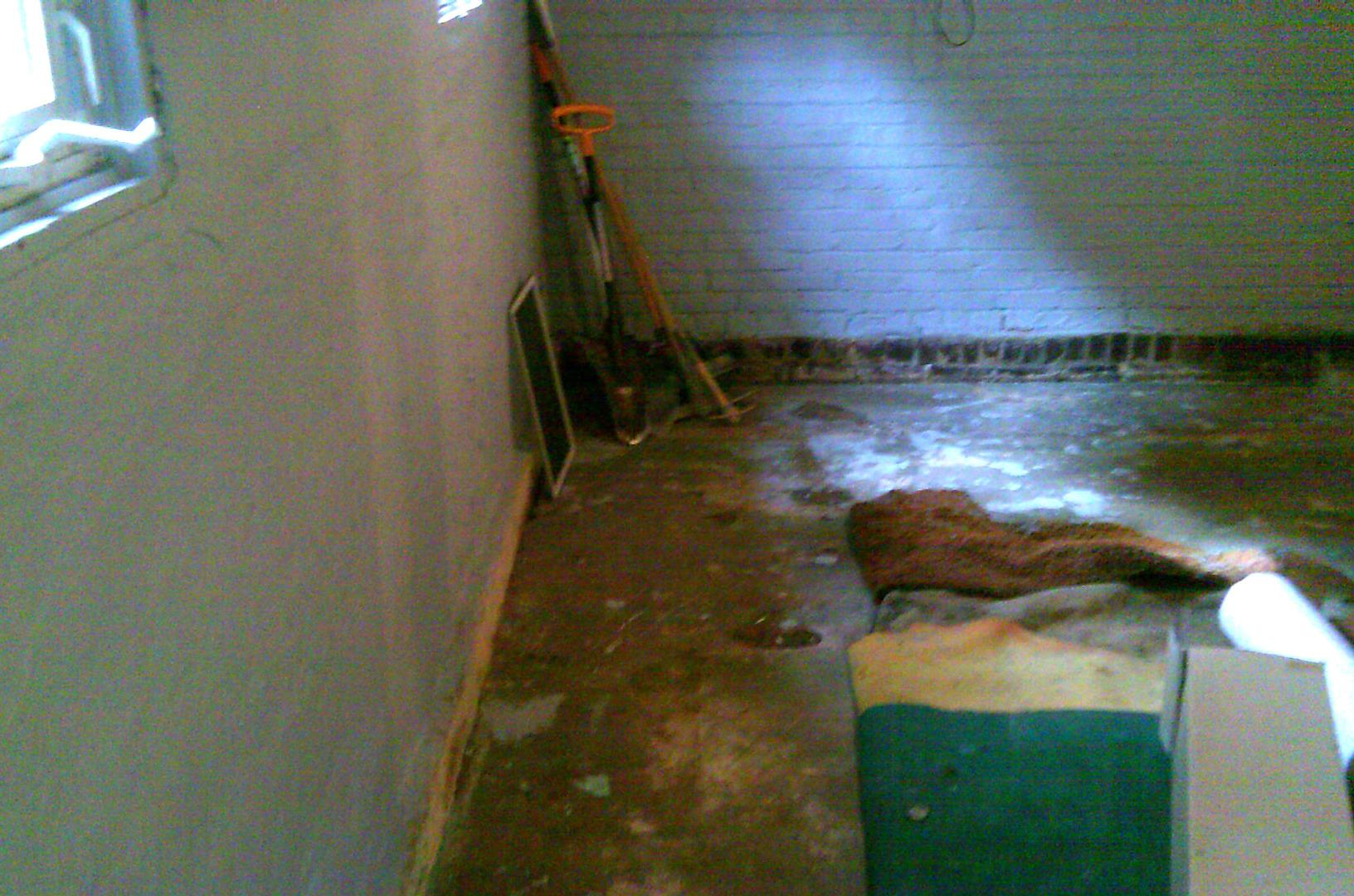 The basement before dank and susceptible to repeated water intrusion.