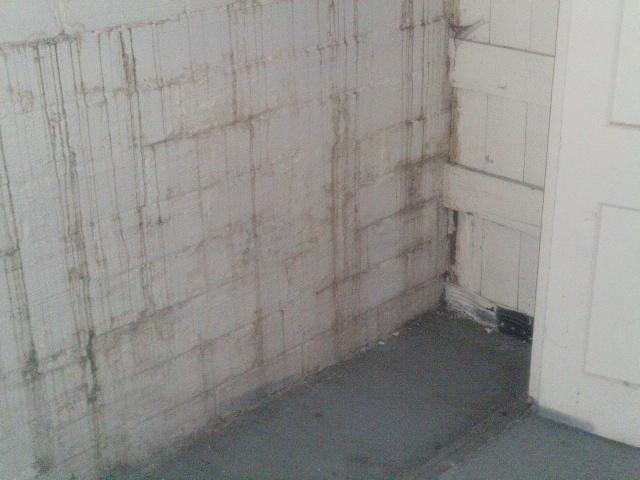 Water has been leaking into the basement through the walls as well as through the space between the wall and the floor.