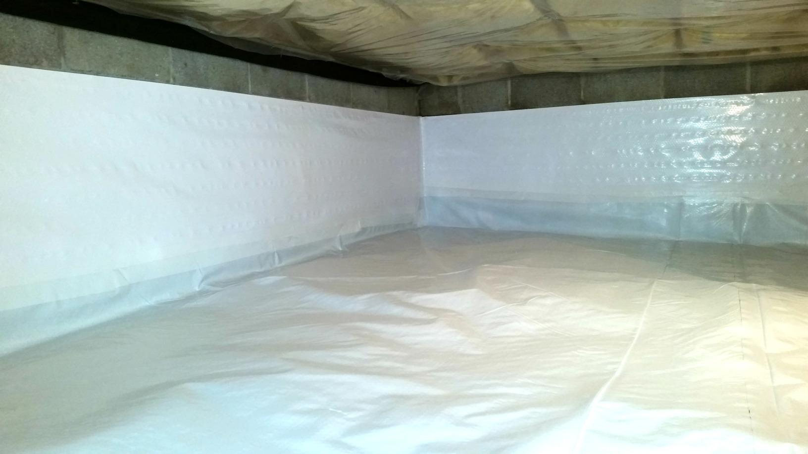 CleanSpace is a thick, durable liner that also has an antimicrobial additive that wards off mold growth.
