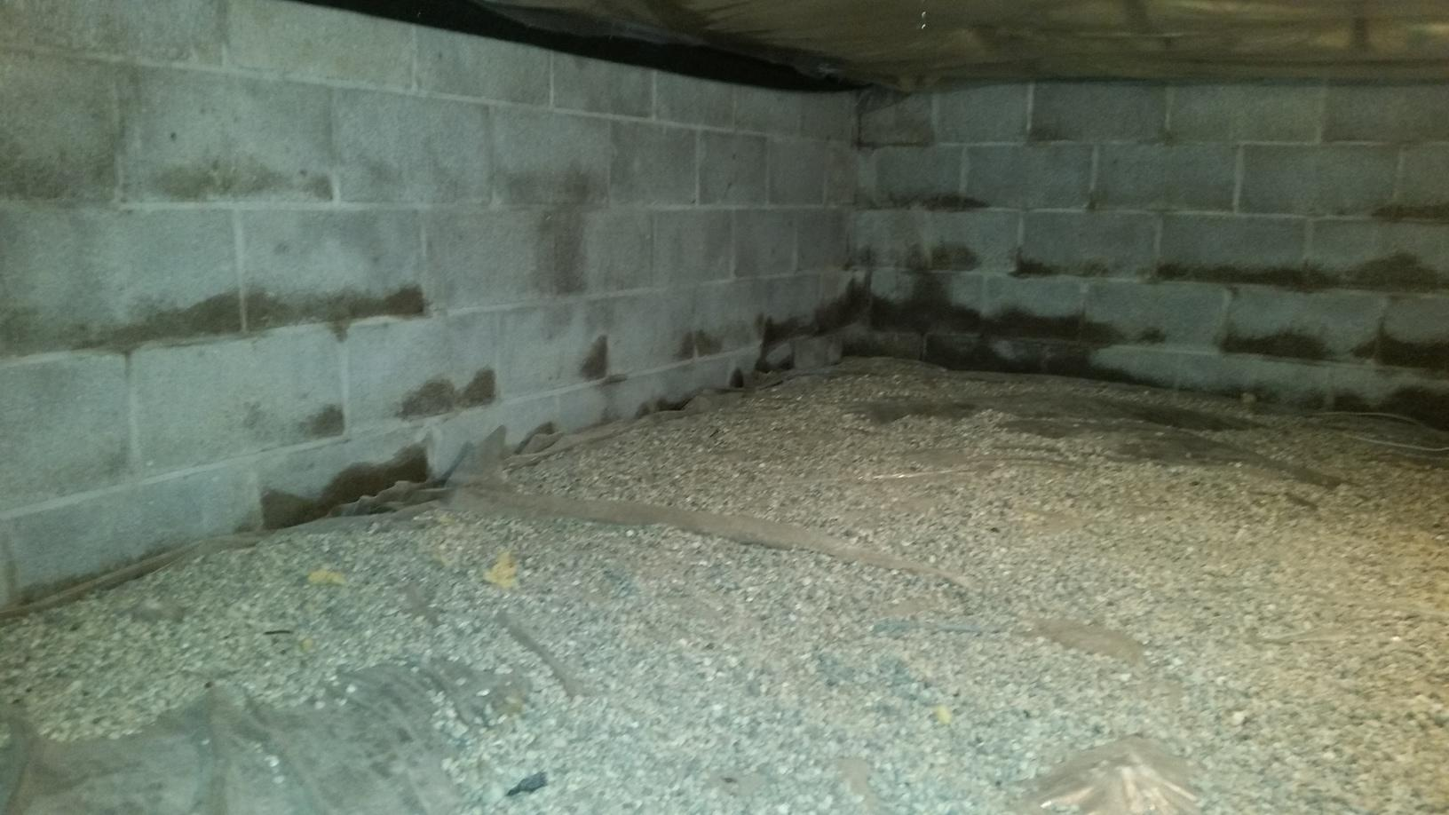 More water seepage in the crawl space through the walls which has lead to a damp, smelly crawl space.