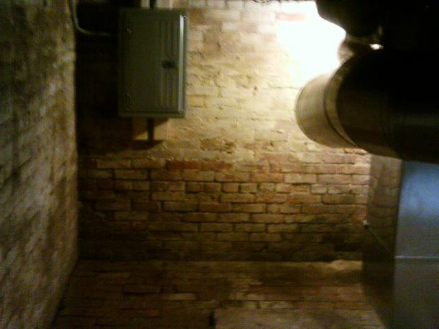 Repeated water seepage has caused the walls and floor of the crawl space to slowly rot.