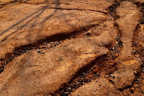 Soil Washout
